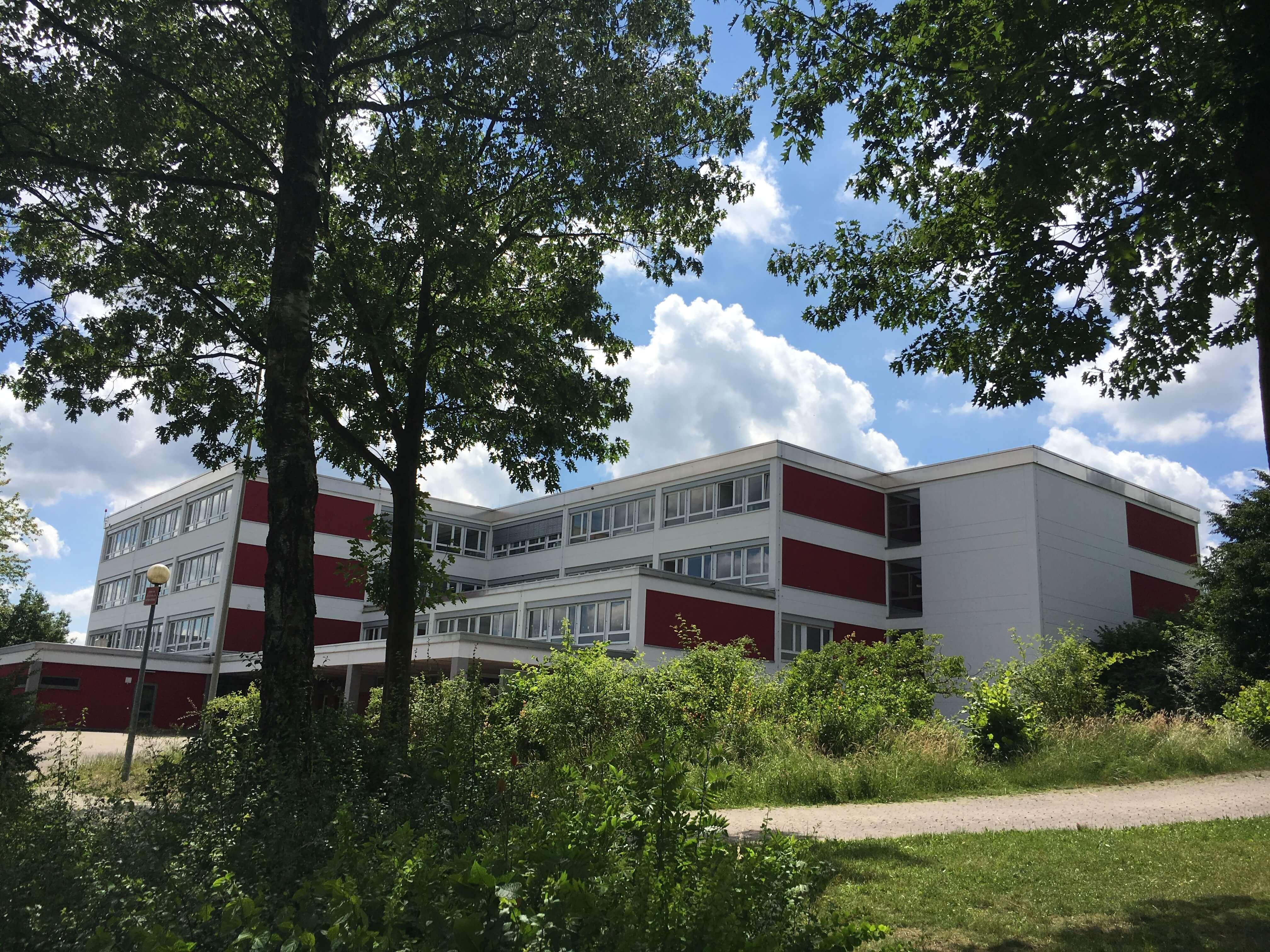 hauptschule_baeume