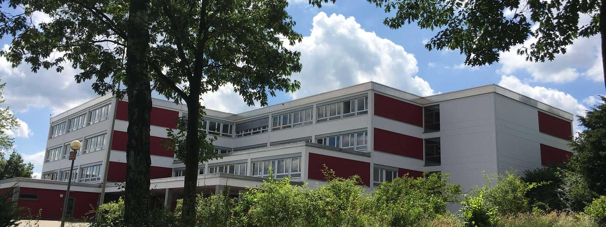 hauptschule_baeume_header_3